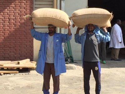 Ethiopia coffee bags