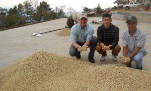 Greg, Jorge Ovalle ( the youngest q-grader) and David Lopez hold drying coffee beans.