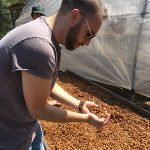Brandon Bir examines honey process coffee in Peru