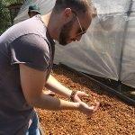 Brandon Bir examines honey process coffee in Peru